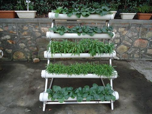 首家中国城市阳台种菜开拓系列产品阳台菜园一站式