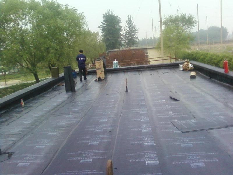 北京海淀区楼顶防水施工材料-专业屋顶房顶防水堵漏