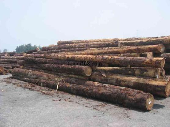 无锡南京—上海地区木材进口代理报关(清关) 鸿泽进口品牌,长三角--珠