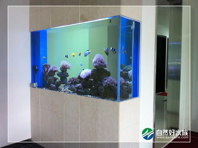 1.2米鱼缸养锦鲤_1.8米鱼缸放多少滤材_鱼缸外滤_鱼缸藤棉_鱼缸过滤棉