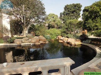 广州碧桂园别墅区水池过滤水v水池工程打造舒适联排别墅新加坡图片