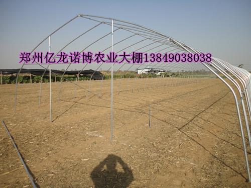 商丘养殖温室大棚骨架 周口蔬菜大棚建设 钢管大棚高清图片 高清大图