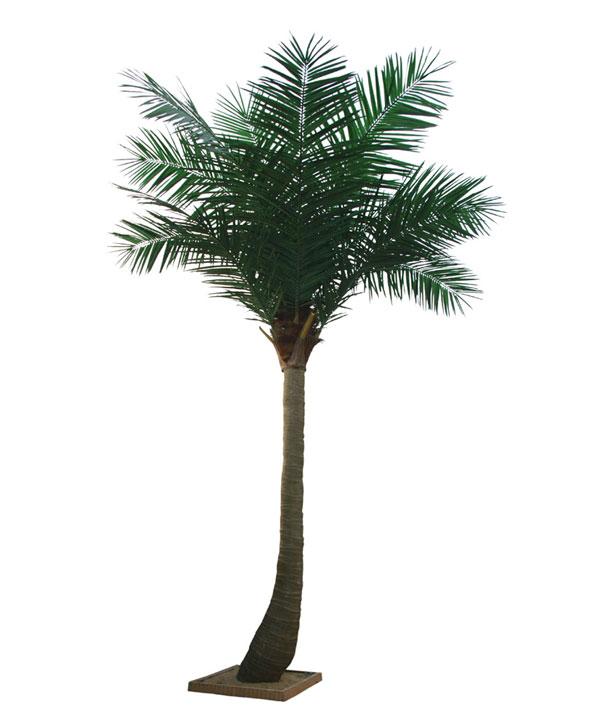 广州仿真椰子树