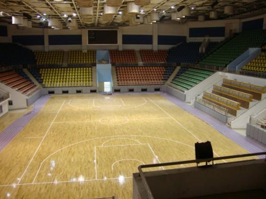篮球场地板/篮球场标准尺寸/篮球场塑胶/木地板篮球